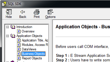 Application Interface